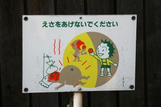 Do not feed the animals!