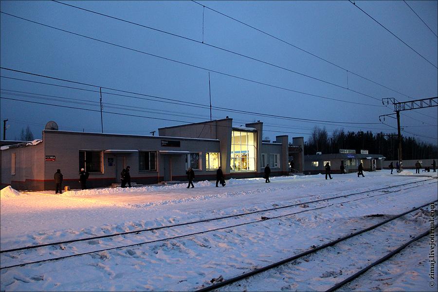 (фото zimaj)