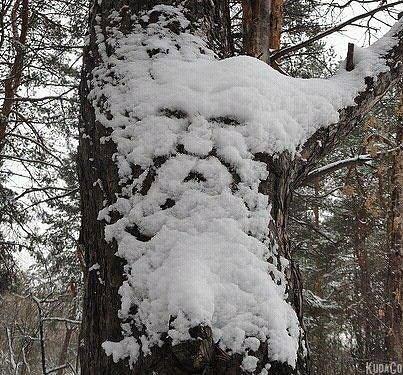 Толстой снег