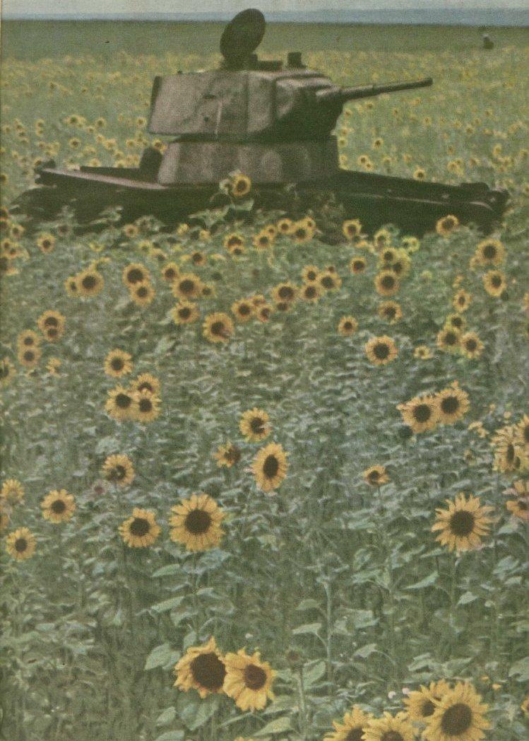 Русское поле , лето 1941 года