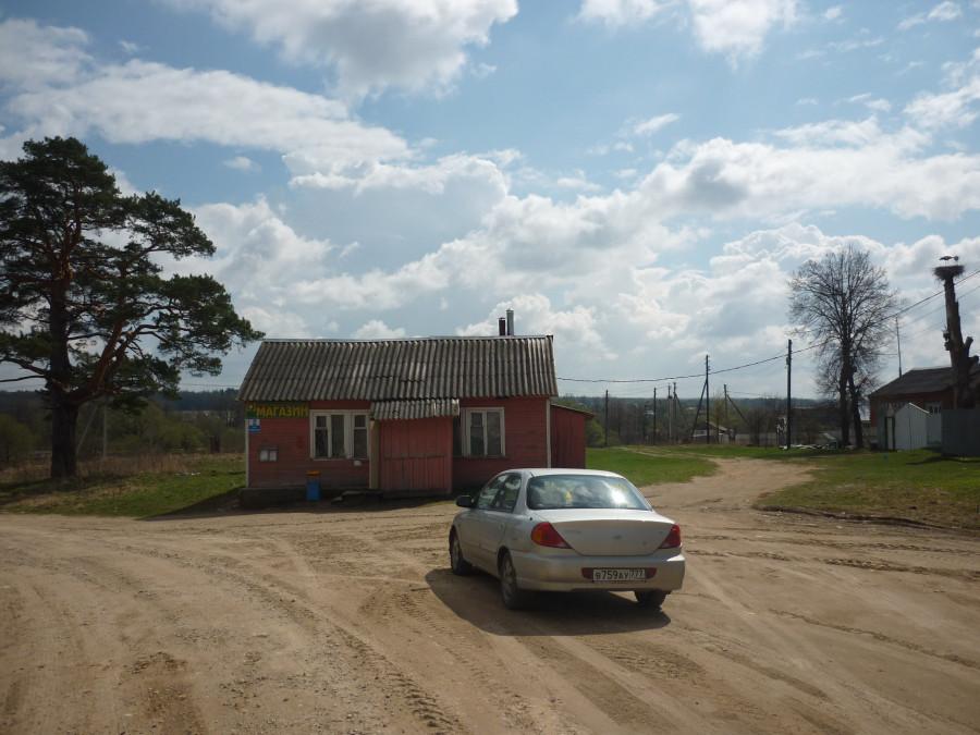 Сосна, деревенский магазин , аисты