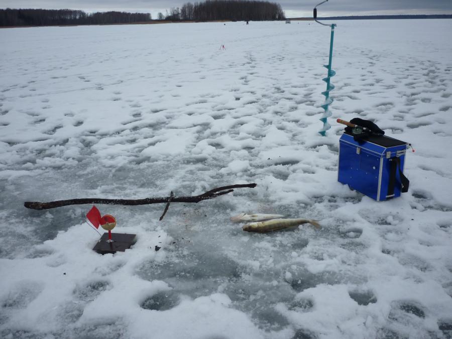 февраль 2014 , Яузское водохранилище, р. Олеля
