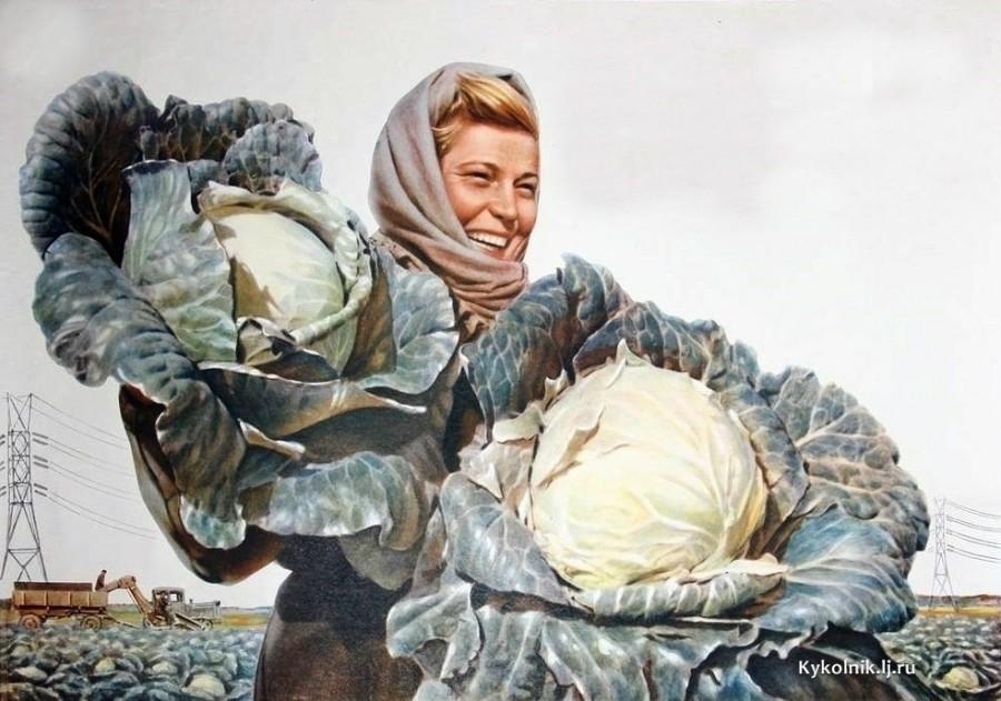 Березовский Борис Феоктистович (Россия, 1910-1977) плакат «Уход хорош - хороша и капуста» 1956