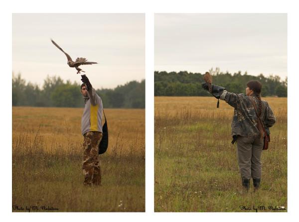 птицы2.jpg