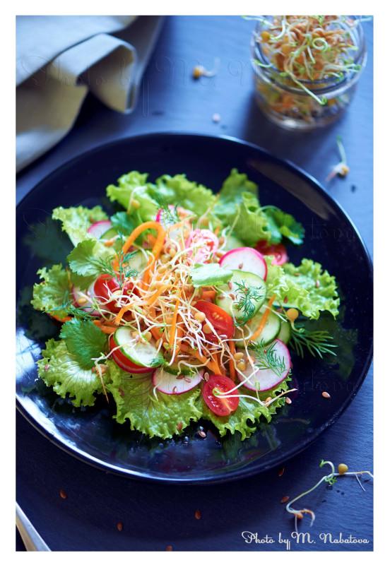 салат с ростками.jpg