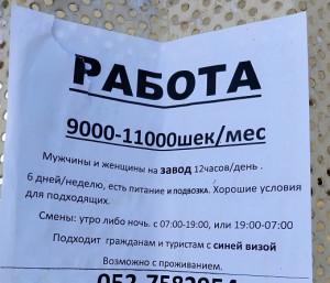 P90509-111800