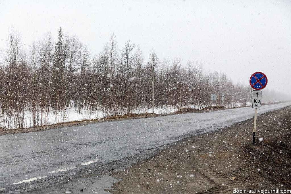 Весениий снегопад