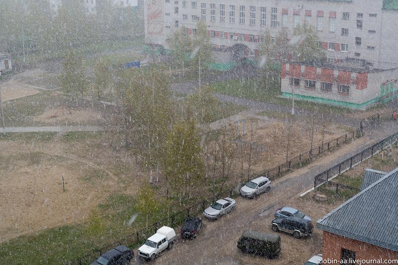 Опять снег :-(