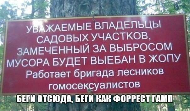 lesniki