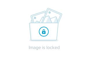 polo-131