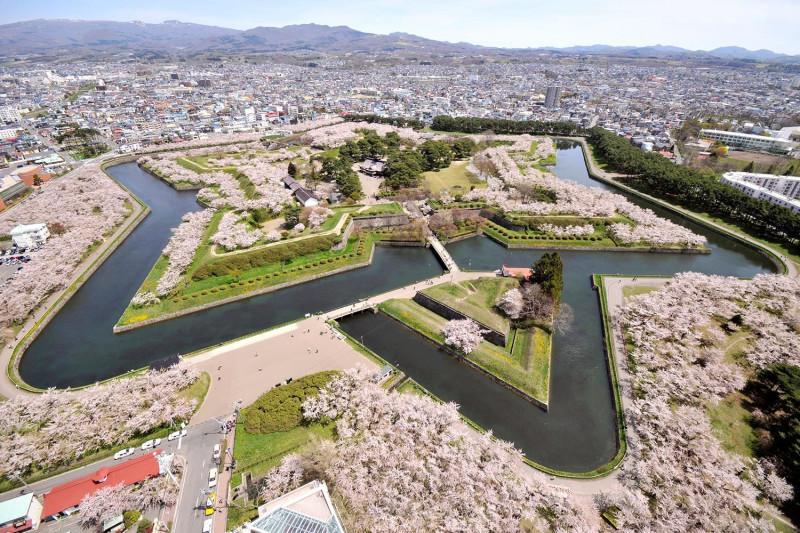 форт Горёкаку - парк где цветут сакуры...