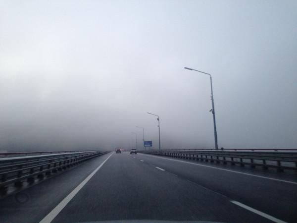 Туман на Мацесте - фото Богданов Дмитрий