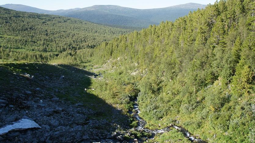 горные ручьи у перевала Дятлова-ж