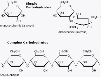 carbohydrate-diagram[1]