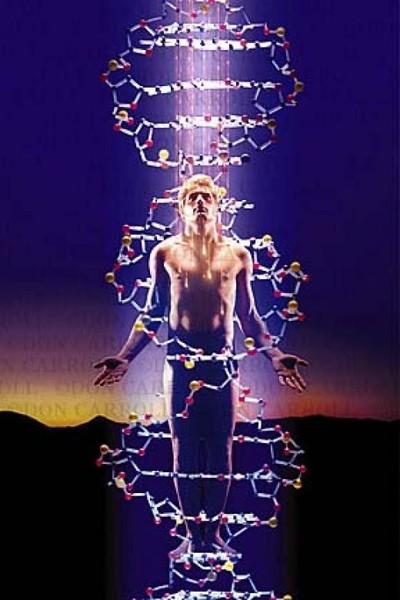 ДНК - биологическая флешка...