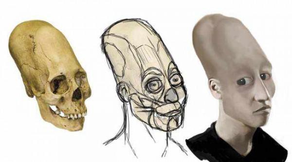 Тайна происхождения загадочных черепов. Версии.
