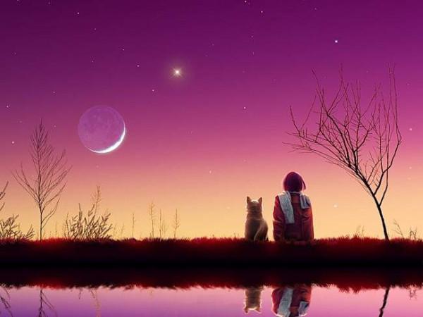 Доброй загадочной ночи!