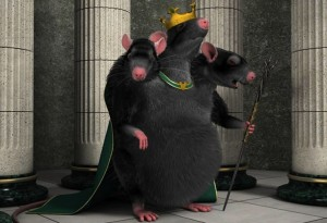 Крысы - смена человечеству?.......
