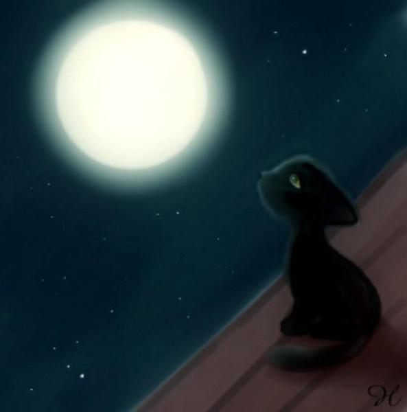 Доброй уютной ночи!