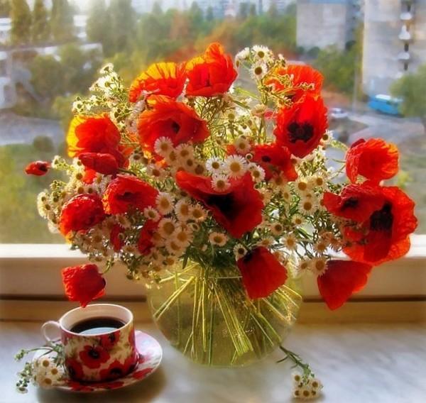 Доброе утро! Солнечного дня!