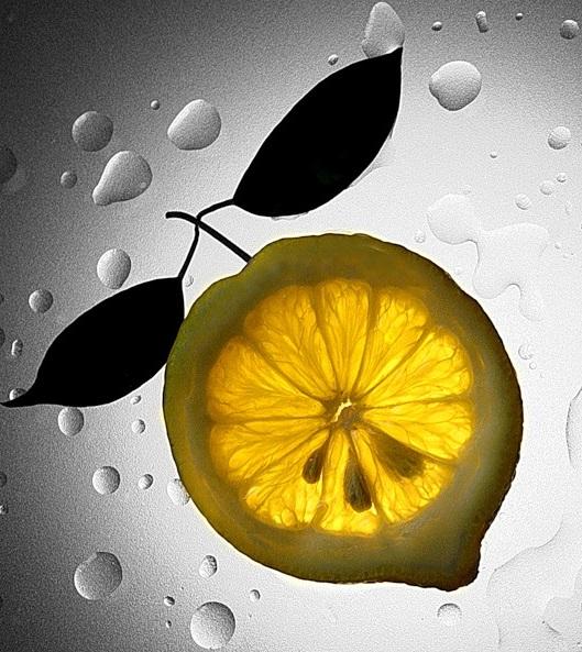 Лимон - №1 среди цитрусовых