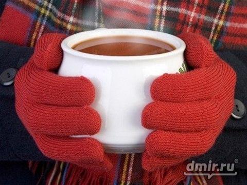 Меню для холодов