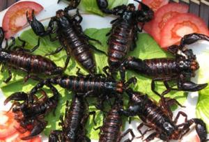 Крылатка, насекомые, шефердия, кожура, и другая еда...