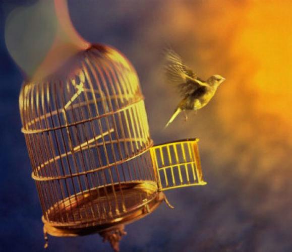 Ловушка невозможности быть честным и настоящая свобода