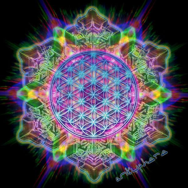 Жизнь человека — многолетний цветок, который возвращается, чтобы цвести вновь и вновь...