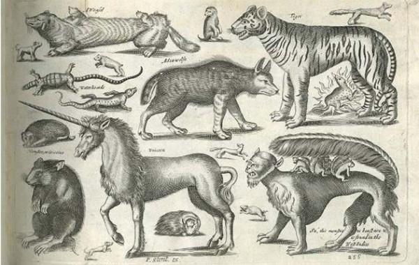 Неслучившиеся животные