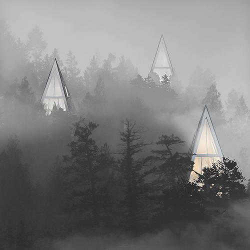 В гармонии с природой: дом-дерево