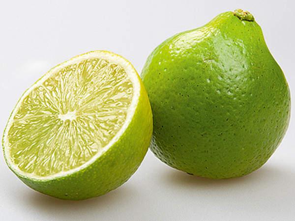 Бергамот - освежающий, чарующий и полезный для здоровья