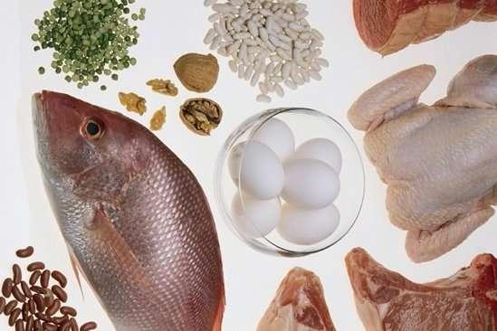 Здоровье и долголетие зависят от количества белков в пище