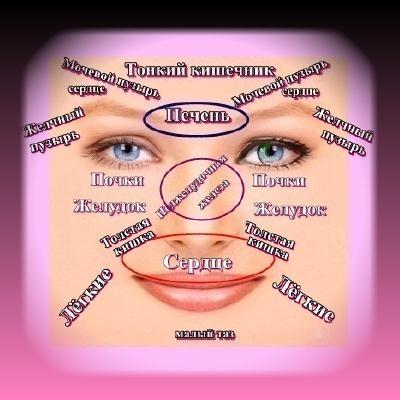 Тайны здоровья и долголетия.Лицо – зеркальное отражение здоровья(2)