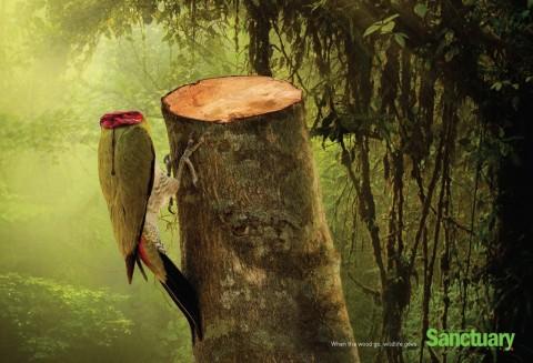 Тайны отношении человека и природы.