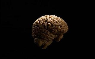 Тайны психологии. Чей голос в голове?