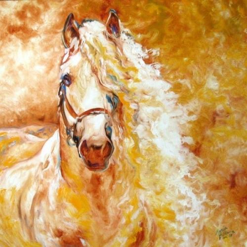 Красивые лошади...