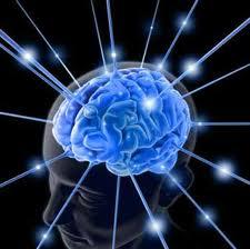 Тайны ума и его вечного спутника -глупости.