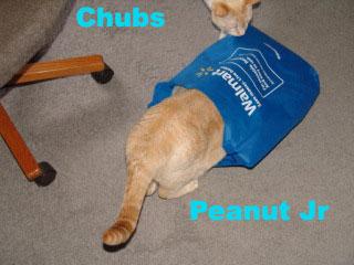 walmart_bag_peanut