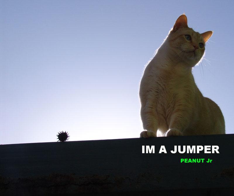 jump_facebook