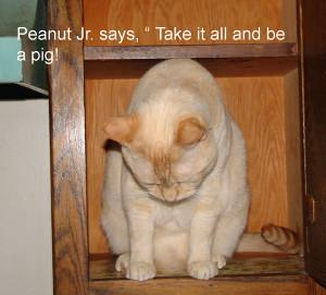 pig_peanut