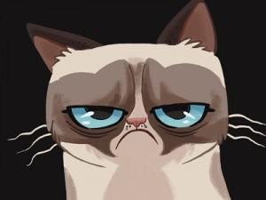cartoon_grumpy_cat