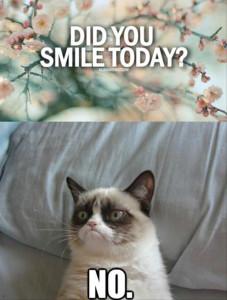 grumpy-cat-no-smile