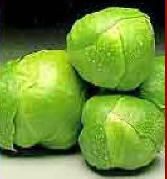 brussel%20sprouts