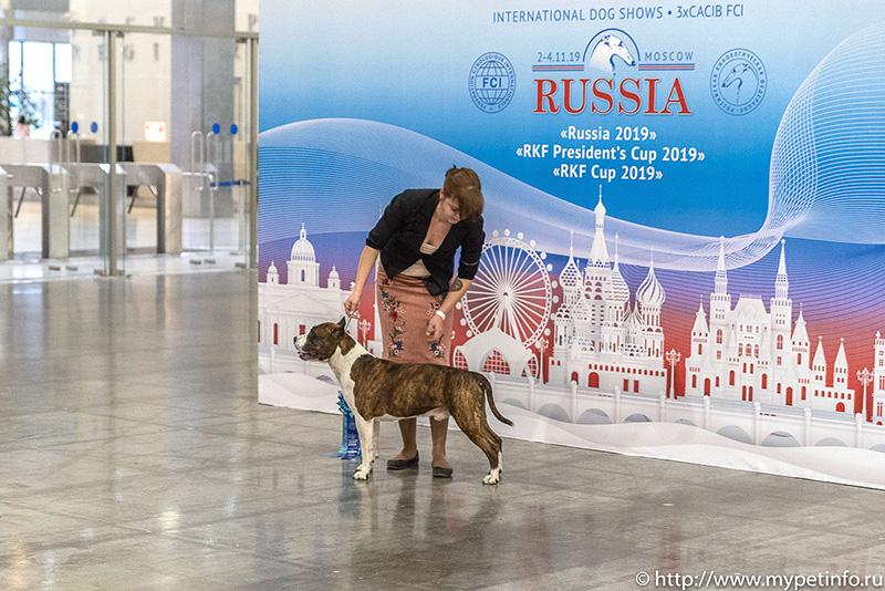 Russia-2019-123_final.jpg