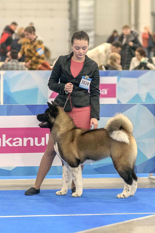 eurasia-2019-47_final.jpg