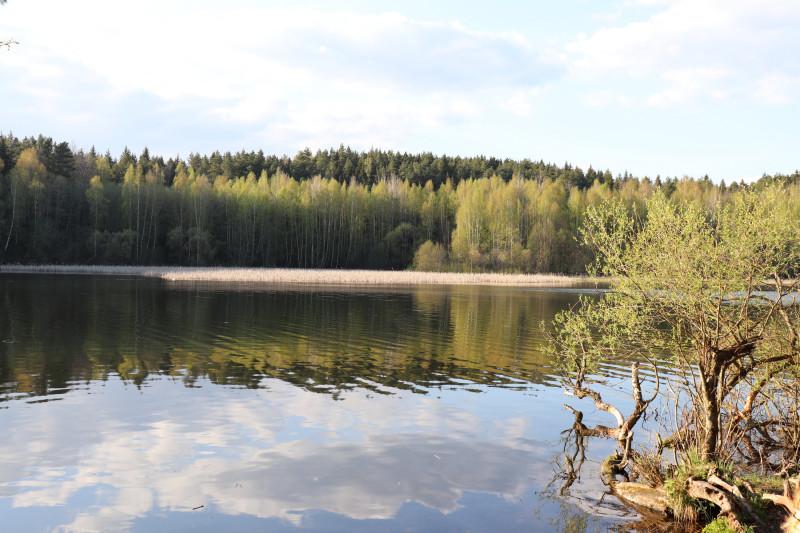 Водохранилище Вяча