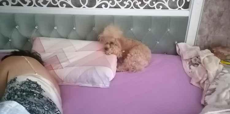 Кешью Мой Нежный Ангел спит
