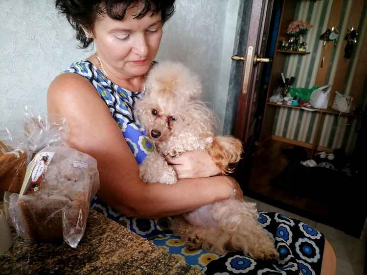 Кешью Мой Нежный Ангел у мамы на ручках