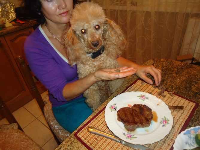 Элтон кушает стейк